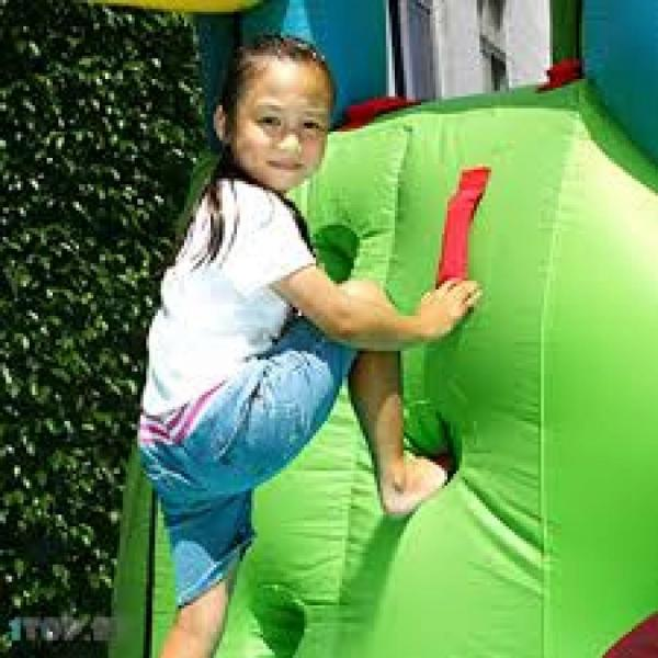 Duplay Happy Hop Inflatable Puppy Land Bouncy Castle with Slide 9109-5893