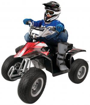 Razor Dirt Quad Bike 24V - Black